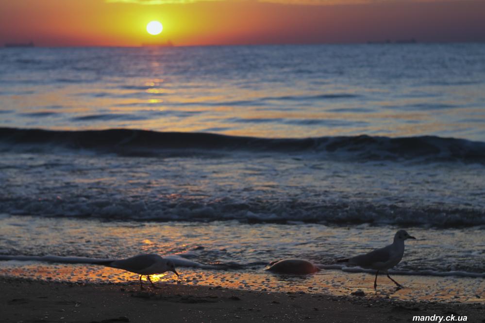 Схід Сонця на морі