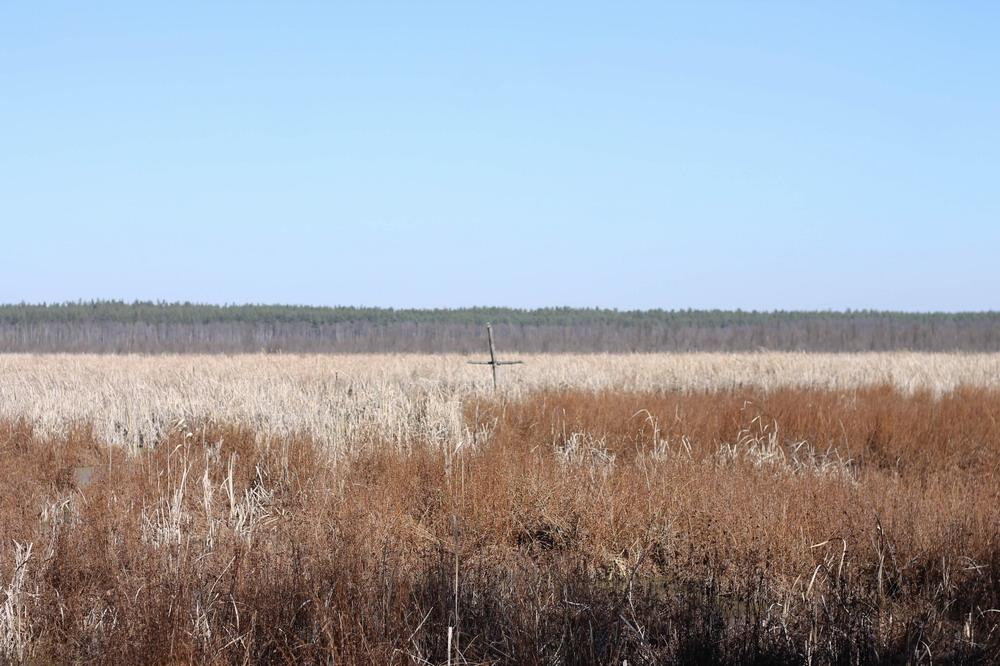 хрест серед болота