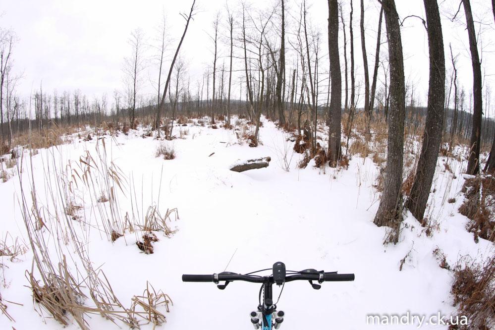 похід на зимове болото