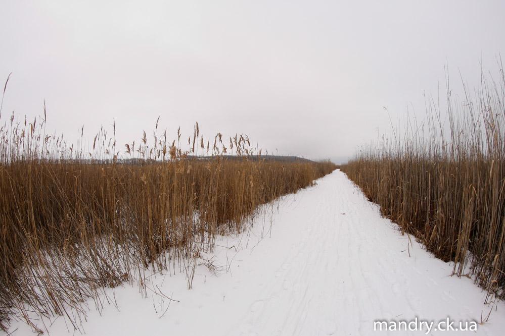 Ірдинське болото біля Сміли