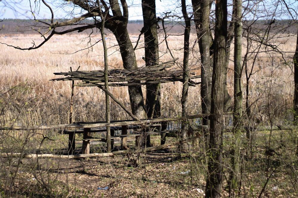 Бесідка з видом на болото