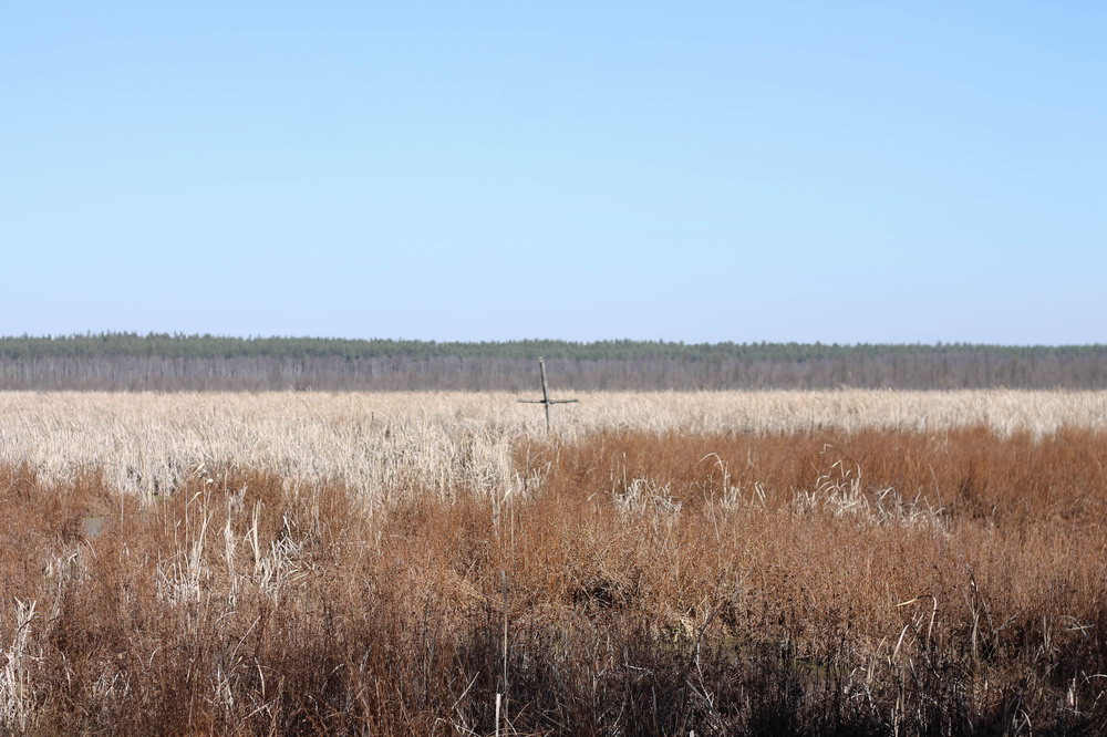 хрест на болоті