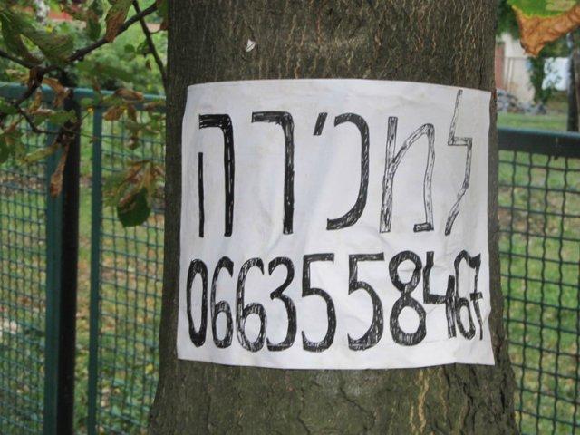 Єврейський новий рік в Умані