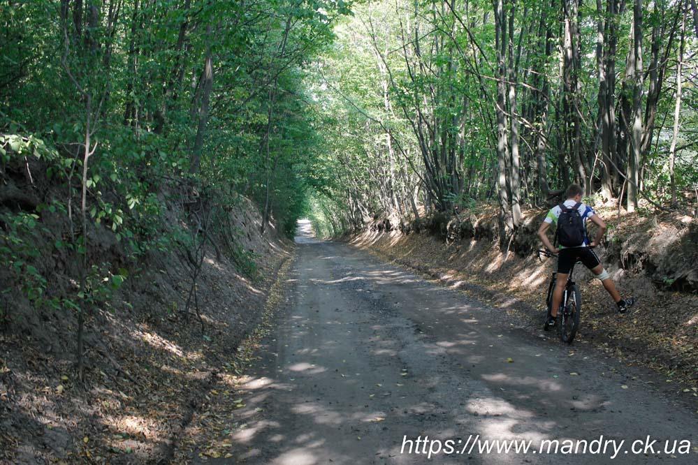 дорога до Ірдинського монастиря
