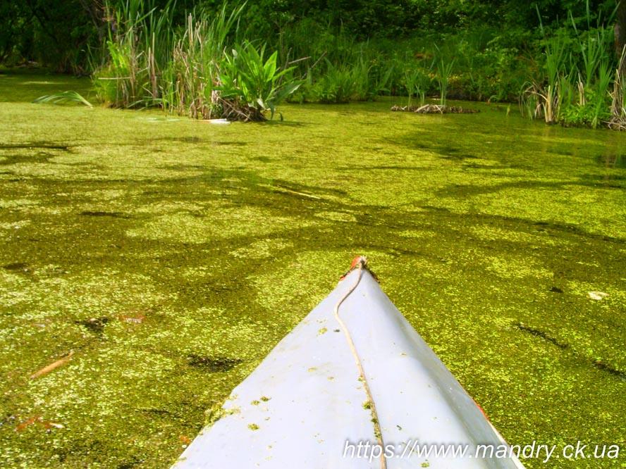 Байдаркою по Ірдинському болоту