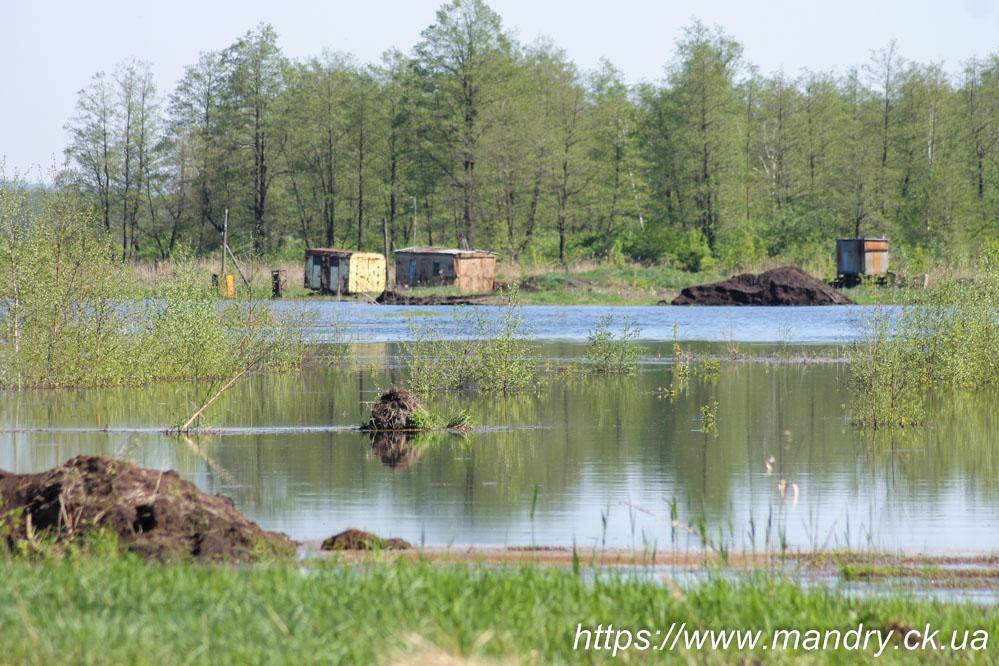 сарайчики на болоті