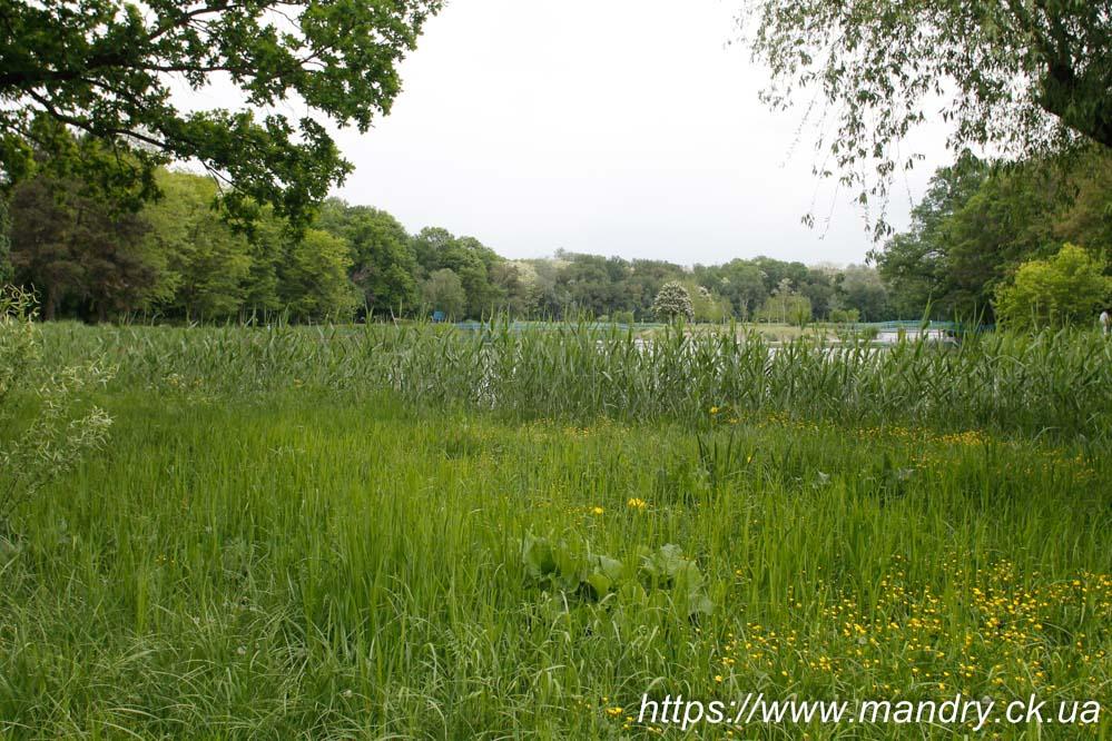 дендрологічний парк Веселі Боковеньки