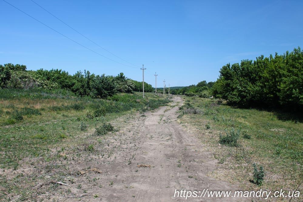 дорога біля села Лікарівка