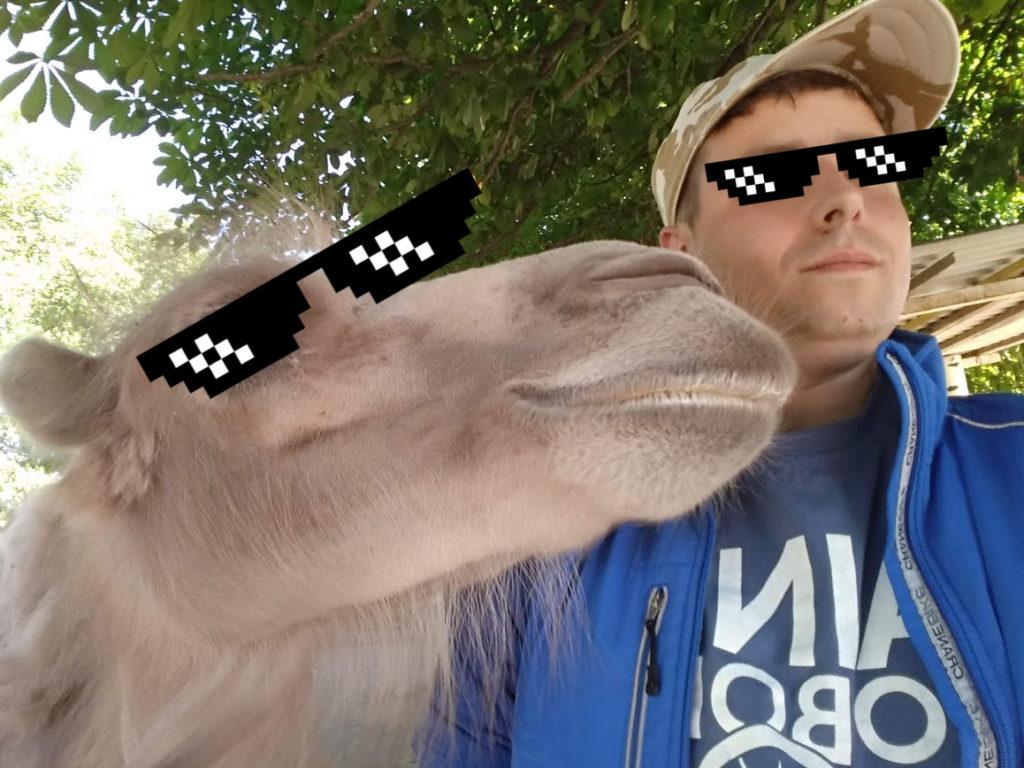 Я і верблюд